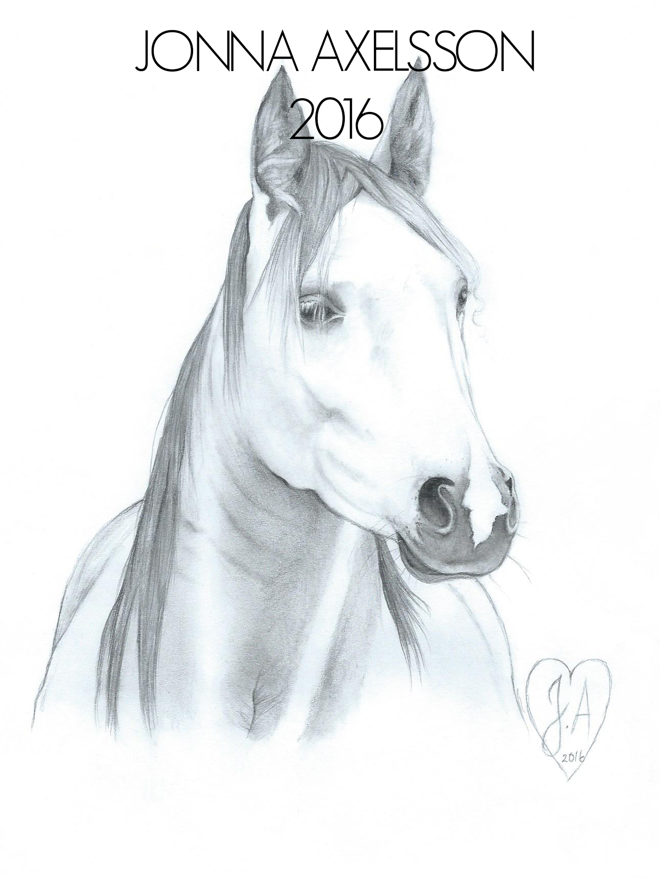 Häst i blyert
